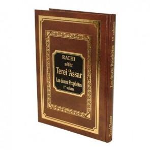 Rachi séfèr Terei 'Assar Les douze Prophètes - 1er Vol.
