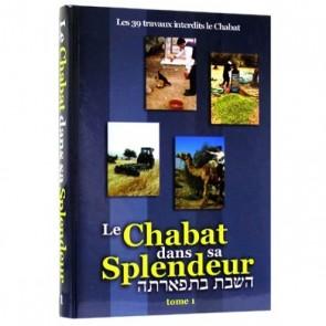 Le Chabat dans sa Splendeur - 2 VOL- Rav Avraham 'Haïm Hadès