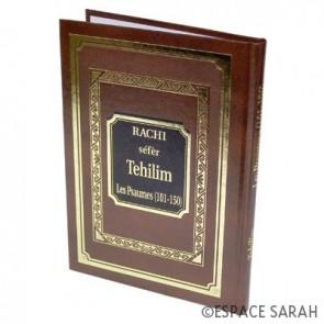 LES PROPHETES + LES HAGIOGRAPHES (24 Livres) avec Rachi traduit Editions GALLIA