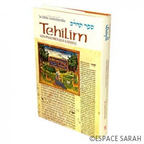 Sefer Tehilim - Les Psaumes II